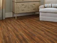 Beyond Plus Floorte Pro 5 Series